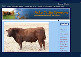 Ficke Cattle Company