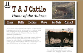 T and J Cattle